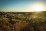 Sunset over Seep Lakes Wildlife Management Area from near Susan Lake, view south w/ Sagebrush & Cheatgrass