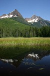North & South Twin Sisters reflected in small pond in Cottongrass meadow w/ Mountain Hemlocks & Alaksa Yellow Cedars
